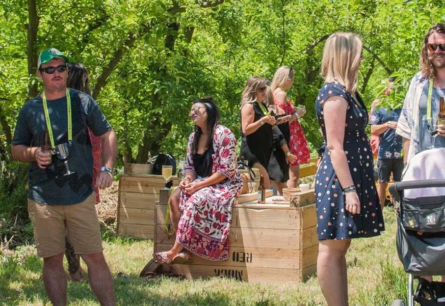 mornington-peninsula-vinehop-festival