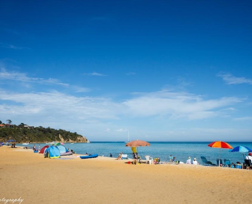mount-martha-beach