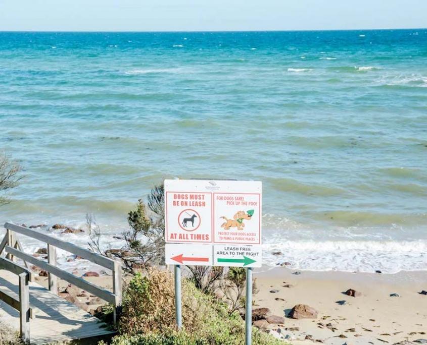 mount-martha-dog-friendly-beach